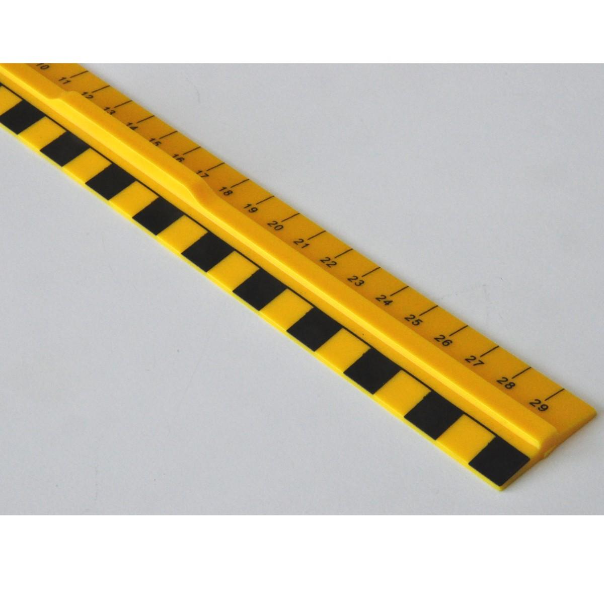 Linjal Grafik 30cm