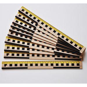 Linjal 30cm dm/cm/mm-grader plast 10 st